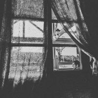 Окно :: Владимир Полянский