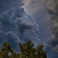 Перед грозой :: Андрей Попов