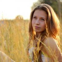Летний вечер :: Nataliya Belova