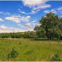 Лето в долине :: Сергей Бережко