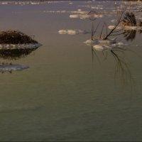 отражения в мертвом море. :: IgorVol IgorVol