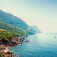 Крым, Инжир :: Мария Скрынник