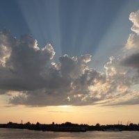 лучи от солнца :: Оксана сухарева