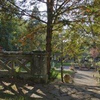 В саду старинного замка :: Сергей Лошкарёв