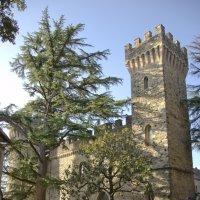 Замок Castello dell'Oscano :: Сергей Лошкарёв