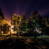 Рассвет в житомирской области :: Алексей Синельников