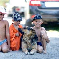 Три танкиста и собака. :: Алексей Хаустов
