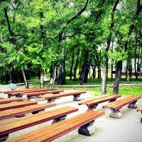 Парк ранним воскресным утром :: Роман Fox Hound Унжакоff