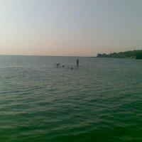 Стоящий на воде.... :: Svetlana Chistova