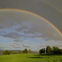 После дождичка :: Volodymyr Comment