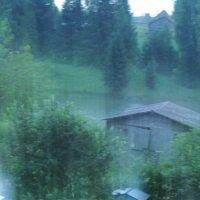 дождь :: Владимир Ч