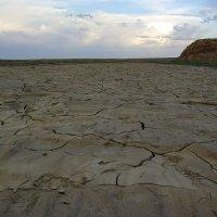 Засуха :: Игорь Кирпатовский