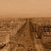 Вид на Париж с Триумфальной арки. :: Ольга