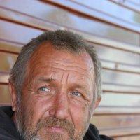 Бездомный Володя :: Алексей Мамаев