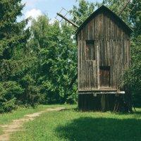 Старая мельница :: Юлия JJ