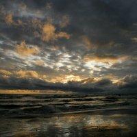 Вечер на Балтийском море. :: Елена Kазак