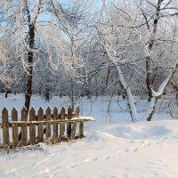 Зима-рукодельница :: Павлова Татьяна Павлова