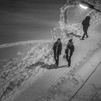 А снег идет... :: Лидия Цапко