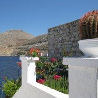 Греция. Остров Сими. :: Лариса (Phinikia) Двойникова
