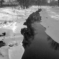 Незамёрзшая :: Сергей Тарабара