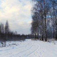 Начало зимы :: Милешкин Владимир Алексеевич