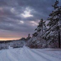 Крымская зима :: Ольга