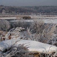 Второй день зимы... :: Александр Попов