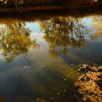 Осеннее зеркало :: юрий Амосов