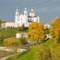 Свято-Успенский кафедральный собор г. Витебск :: татьяна Сапего