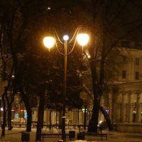 В парке .Декабрь-1 :: Андрей Хомяков