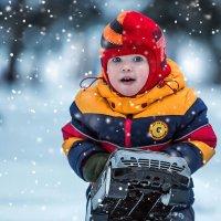 Снег! :: Наталья Новикова