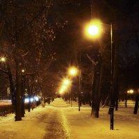 Ночная зима :: Kirill Chepurnoy