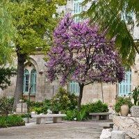 Дворик в старом городе Иерусалима :: Владимир Брагилевский