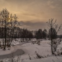 Река Дрезна декабрь 2016 :: Андрей Дворников