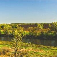 Панорама реки Зуша :: Александр Березуцкий (nevant60)