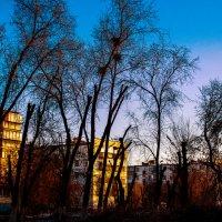 Урбанистический пейзаж :: Наталья Попова
