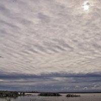 озеро Неро :: Алена Белодедова