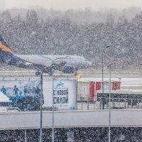 Снежный заряд :: Валерий Смирнов