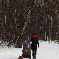 На прогулке :: Андрей Лукьянов