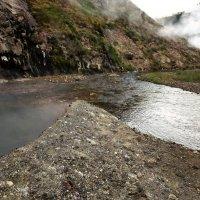 Гейзерная река в долине гейзеров. :: Елена Савчук