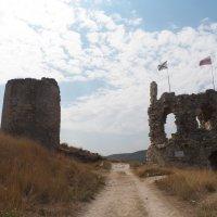 Старая крепость :: Регина Пупач