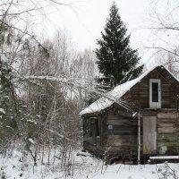 Зима в Простоквашино :: Мари B