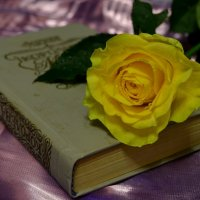 Моя любовь к книгам началась с Александра Дюма! :: Таня Фиалка