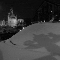 ___ :: Людмила Цвиккер