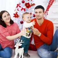 Новогодняя фотосессия :: Elena Vershinina