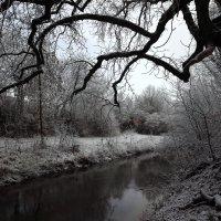 Зима приходит торжествуя :: Эдвард Фогель