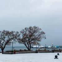 холод на берегу.. :: Надежда Шемякина