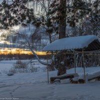 Зимнее утро на берегу реки Дубны. :: Виктор Евстратов