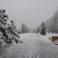 Непогода :: Юрий Баланчук