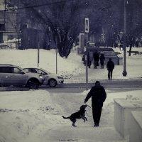 ...однажды...   хмурым зимним днём... :: Ира Егорова :)))